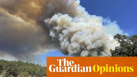On Covid and climate we can achieve change – but we're running out of time  | Robert Reich
