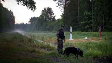 """Alertan sobre la extensión de la """"guerra híbrida"""" bielorrusa"""