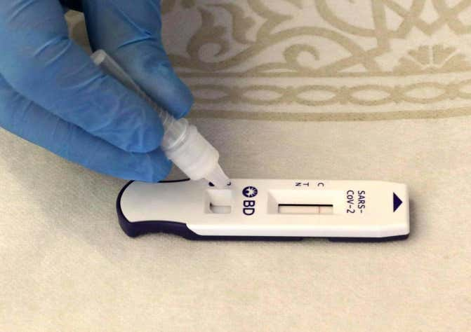 What's the difference between serological, PCR and rapid antigen tests?