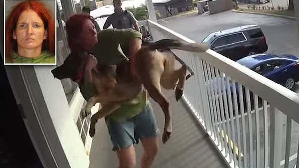 Shocking bodycam shows a woman throwing her German Shepherd off a motel balcony in Florida