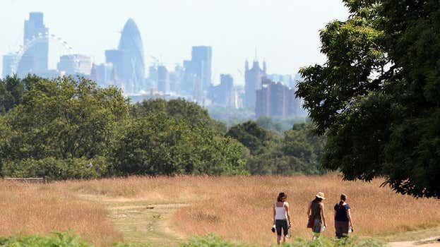 London's leafiest boroughs revealed as Earth Day study shows how much of the capital is covered in trees