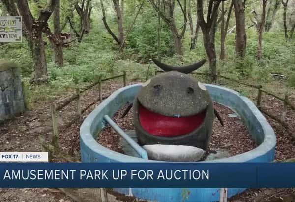 Amusement park up for auction